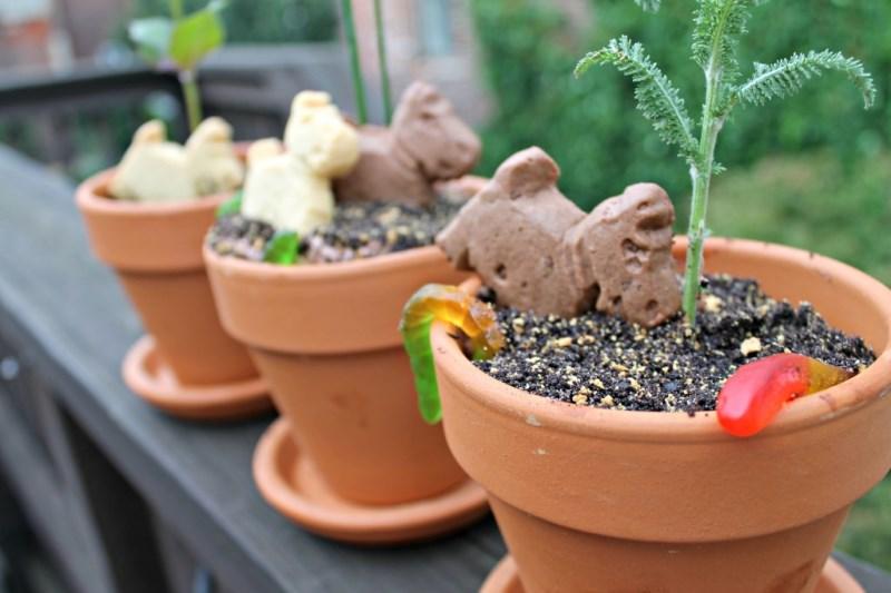 Dirt Flower Pot Cake